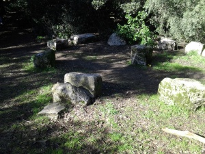 Stones in the Druid Circles