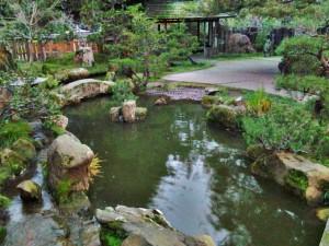 Secret bonsai garden
