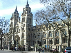 The London Natural History Museum