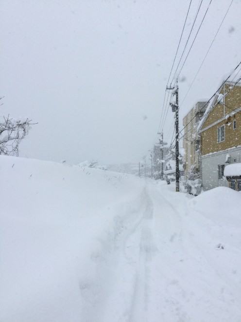 My walk to work in a whiteout.