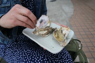 OYSTERS!!! Photo courtesy: Jenny Lee.